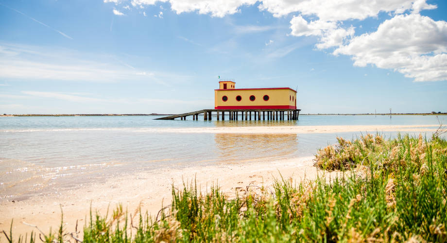 Ria Formosa Beach Portugal Image