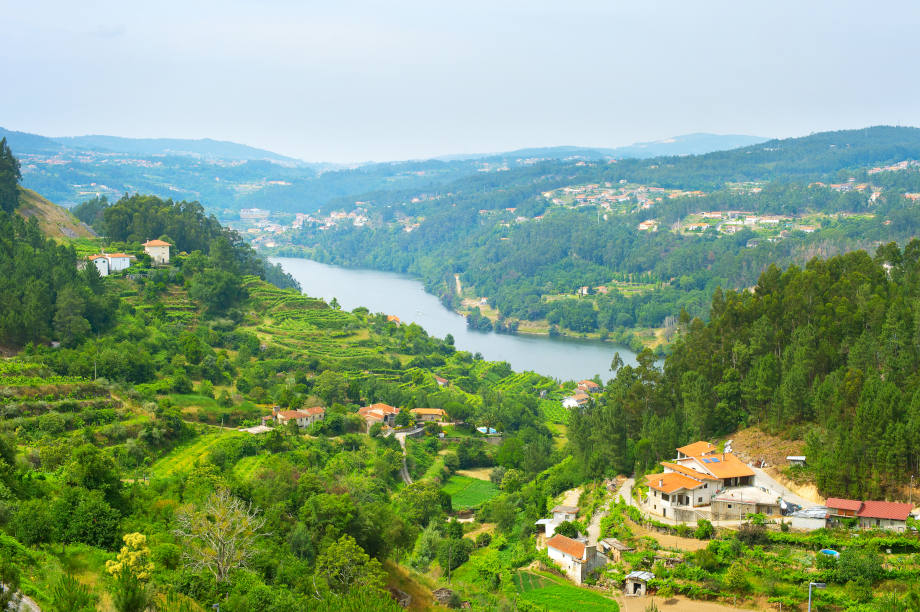 Landscape of Douro wine region in the sunny day. Portugal