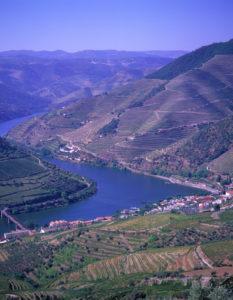 Famous Alto Douro wine region (Portugal)