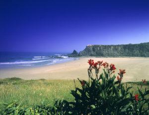 Beach scene the Algarve